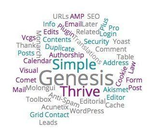 Los plugins que tengo instalados en mi WordPress